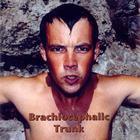 EricFerguson - BrachiocephalicTrunk