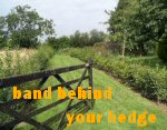 BAND BEHIND YOUR HEDGE